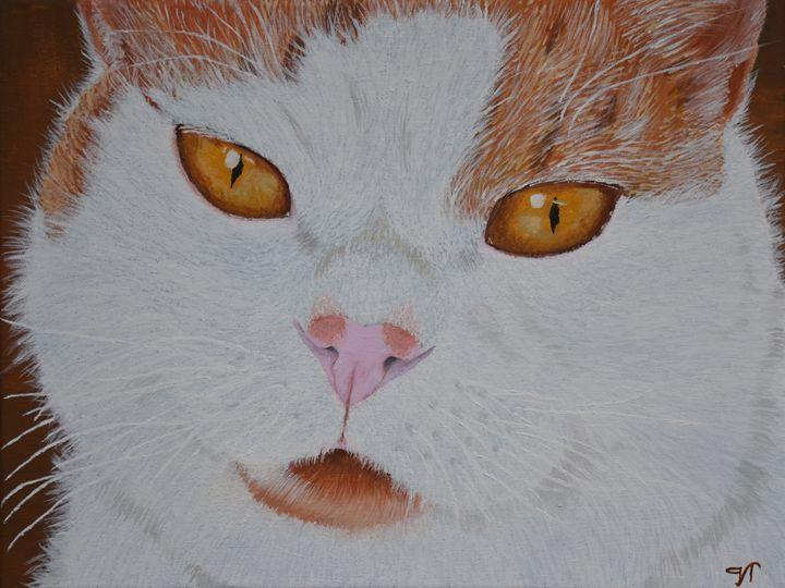 My cat - Van Titlow
