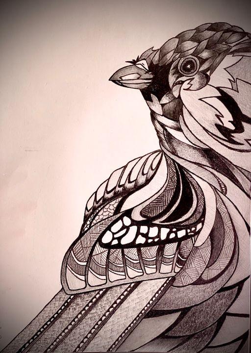 Bird sketch - Tamanna