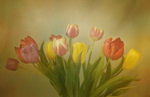 The Joy of Tulips