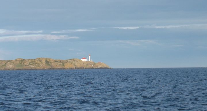 Light House on the Isle - Jewell Art Expressions