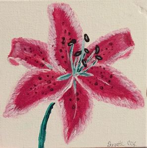 Simple Pink Lily