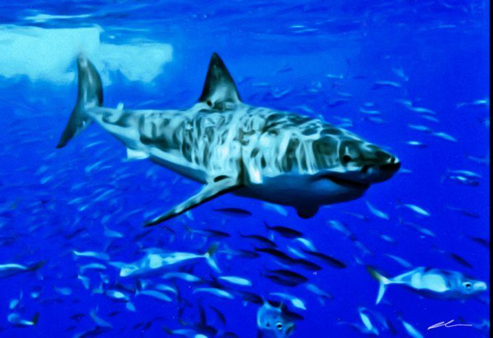 Great white shark - Alina