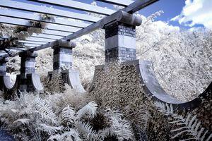 The Walled Garden Trellis