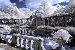 The Walled Garden Pool - chuck_lembo