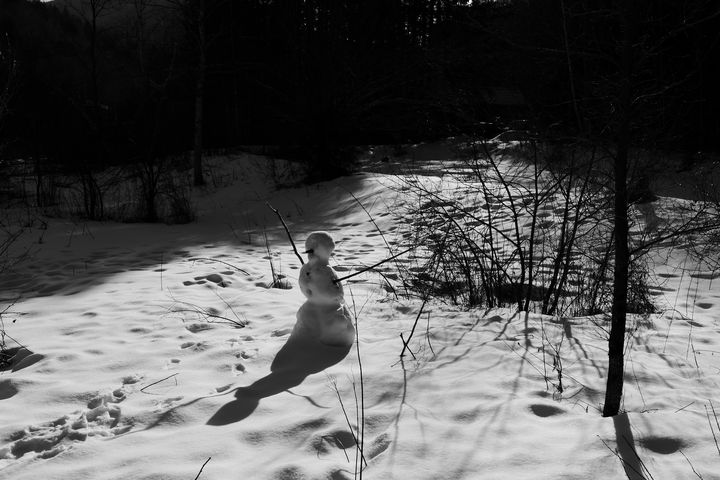 Snowman - chuck_lembo