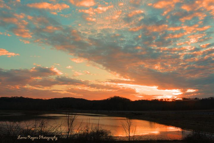 March Sunset - Nature and Wildlife Art