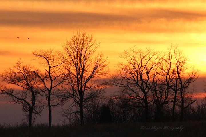 Sky On Fire - Nature and Wildlife Art