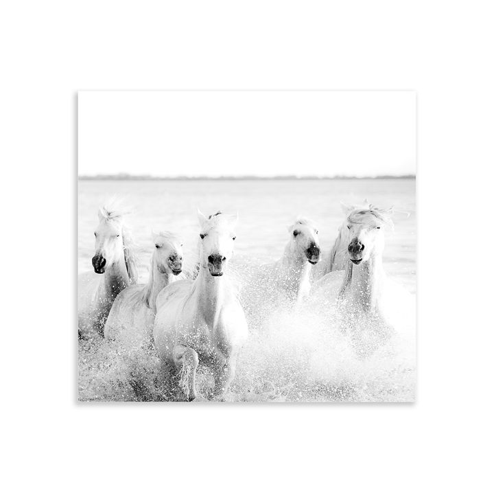 Ghostly horses - jennialexander