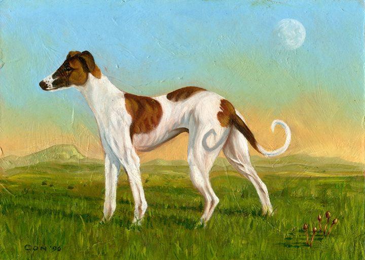 Tri-coloured Greyhound - ConArt