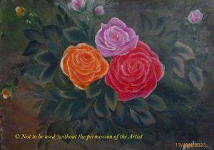 Three Colour Roses (A3)
