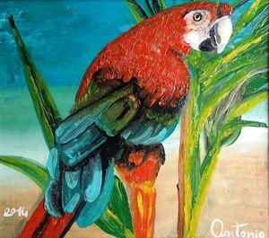 parrot living - art of web