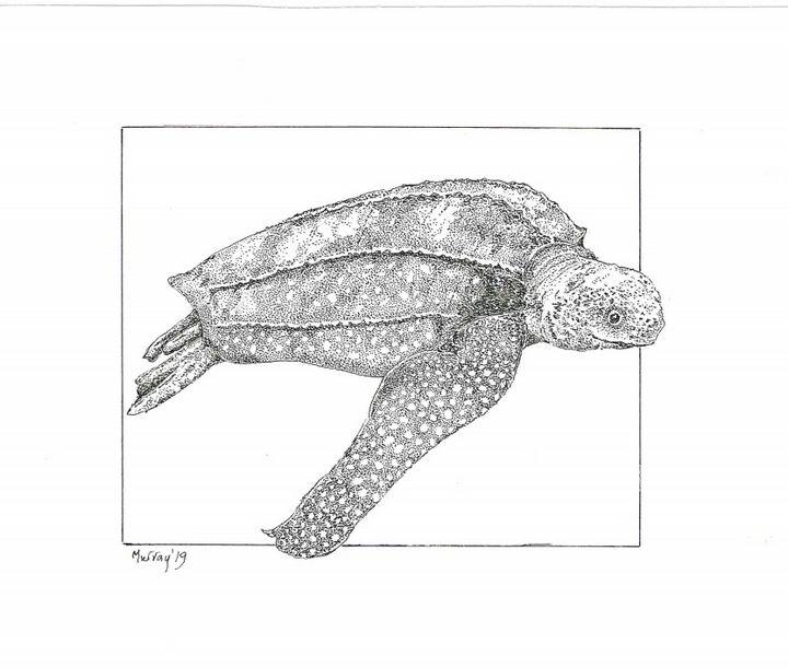 Leatherback Turtle - Murray McDowell Dot-To-Dot