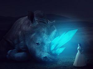 Fairytale Rhino