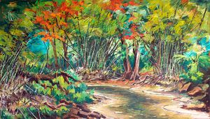 Flamboyant Trees at the River