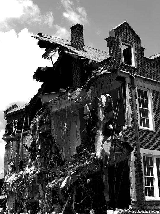 Beautiful Destruction - Jessica Royer