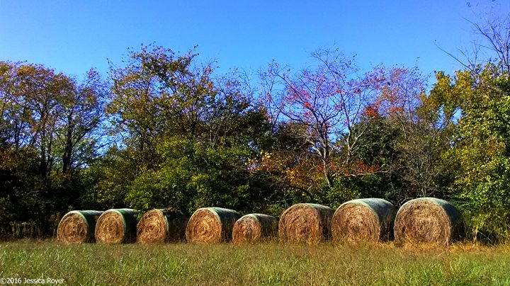 Autumn Delights - Jessica Royer