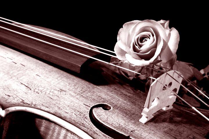 Violin Music 1346. 350 - M K Miller III