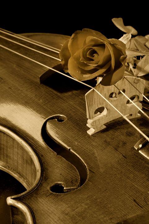 Violin 5548..056 - M K Miller III