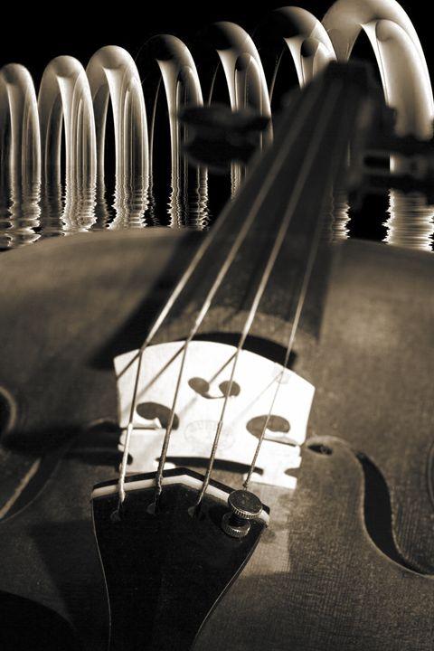 Violin 5548..057 - M K Miller III