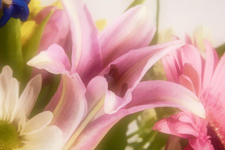 Flower 5561.005 - M K Miller III