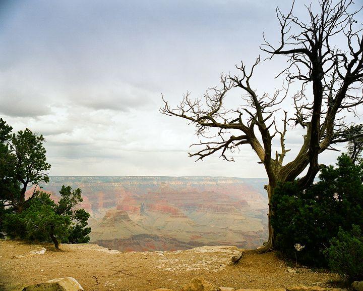 Grand Canyon  5545.82 - M K Miller III