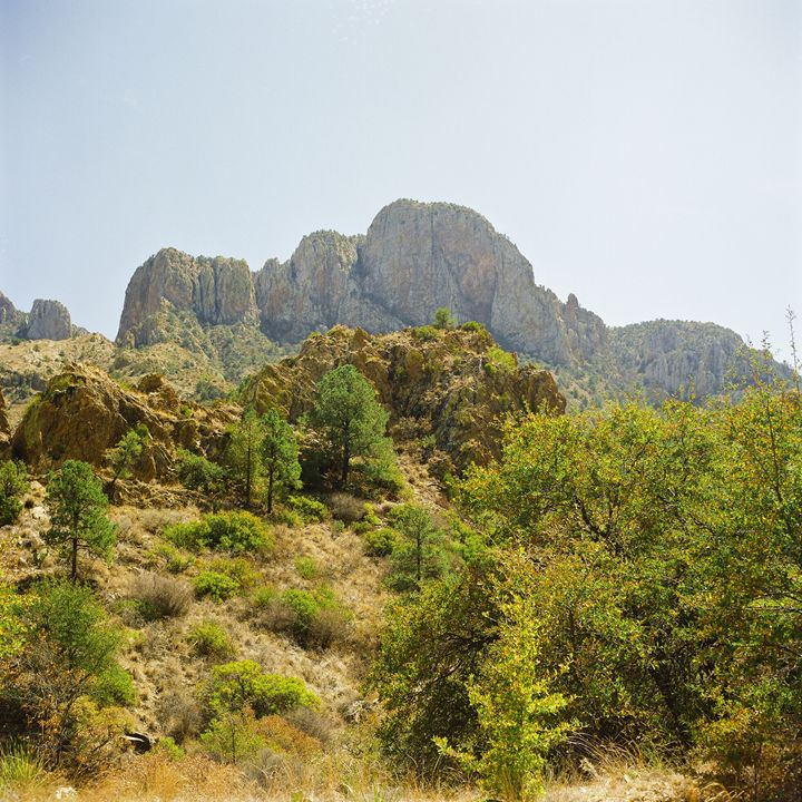 Big Bend Texas 1443.044 - M K Miller III