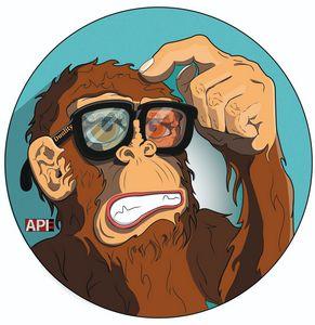 DualitY chimp - AAPIEE