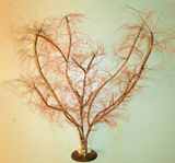 30x26 Copper Tree Art Display