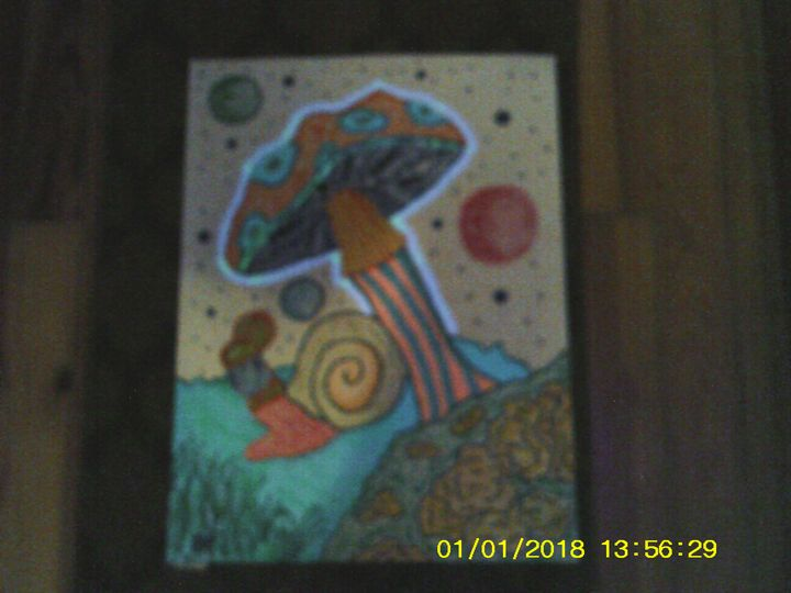snail - Christopher Forney