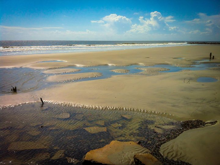 Low Tide Puddles - Randall Messina