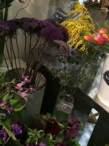 Studio bloom 2