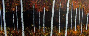 Birch Forest 2