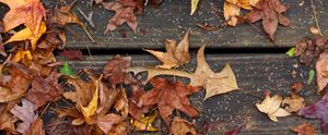Leaves and Boards