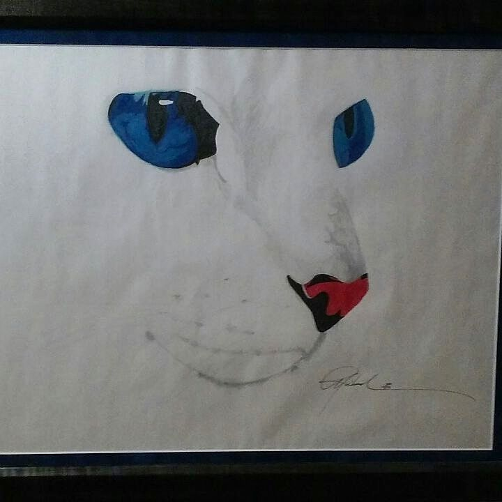 Persian Eyes - Original Art Works