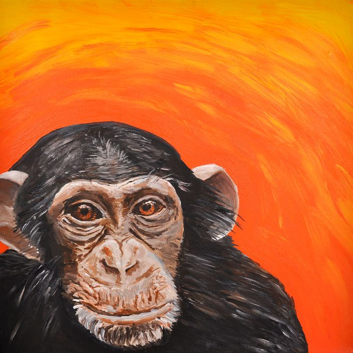Quirky Chimpanzee - Lucy Quirk