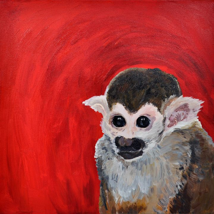 Quirky Spider Monkey - Lucy Quirk