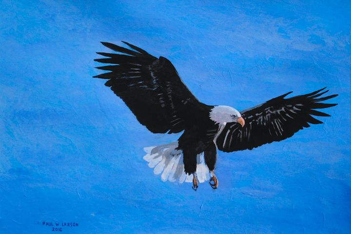 An Eagle - Paul Larson's Artwork