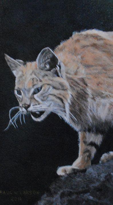 Bobcat - Paul Larson's Artwork