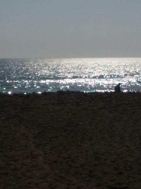 at sunset - jims art