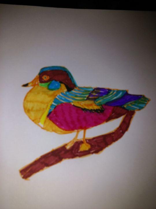 a duck - jims art