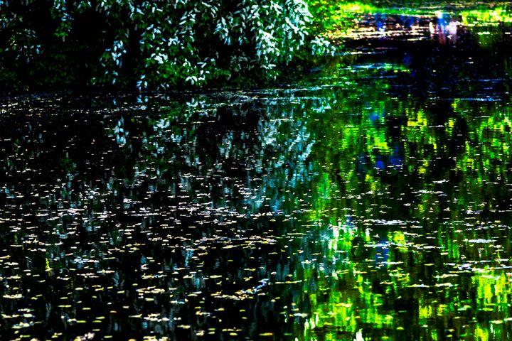 Old Pond in Spring - digimatic