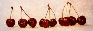 Cherries Panorama - digimatic