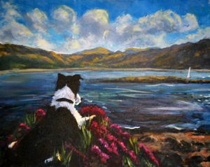 Poppy on the loch