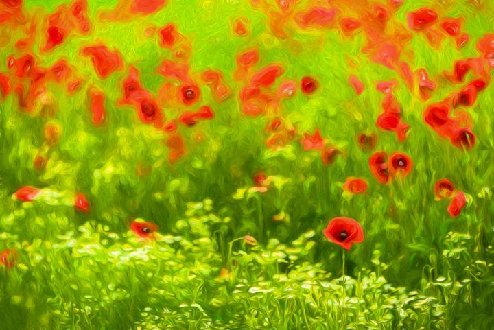 Poppyflower I - Tamme Maurer (Gratus Art)