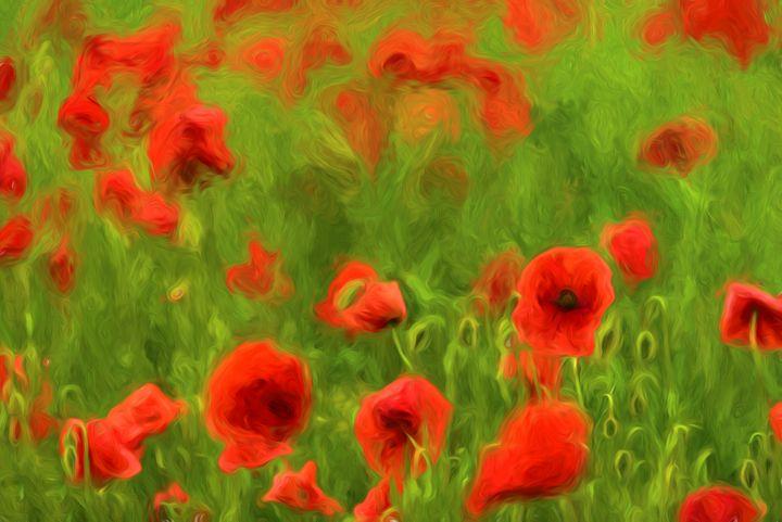 Poppyflower II - Tamme Maurer (Gratus Art)