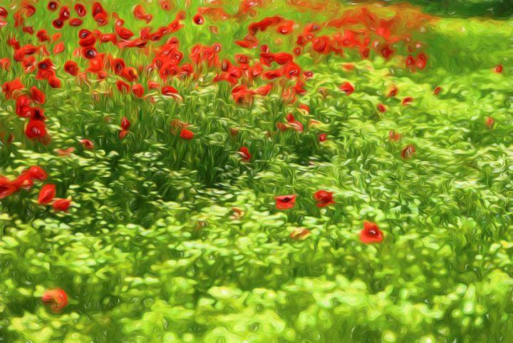 Poppyflower V - Tamme Maurer (Gratus Art)
