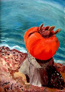 Persimmon at the Beach