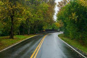 Wet Roadway