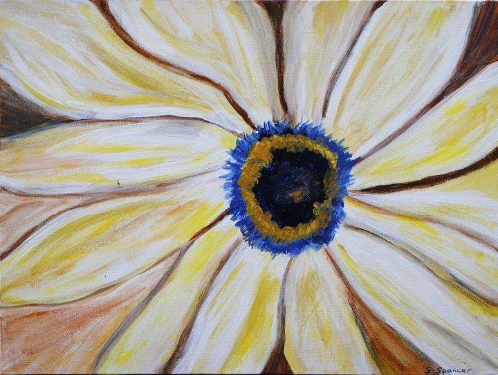 Sunburst - Shirley Spencer