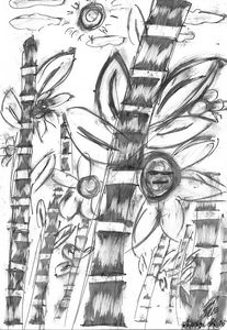 Bamboo Black and White